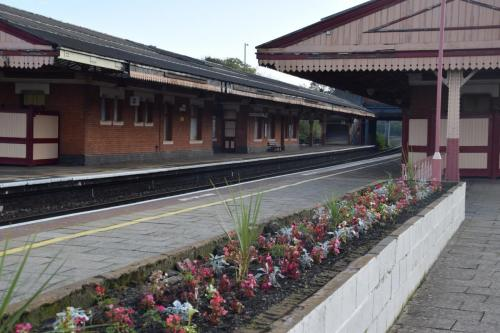 Some volunteer projects: Tyseley Adoption